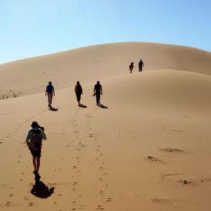 marcheurs dune désert